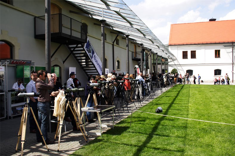 m.objects auf Festivals in Fürstenfeld und Zingst