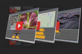 Neue Videotrainings online