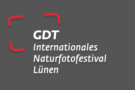 m.objects auf dem virtuellen Fotomarkt des GDT-Festivals